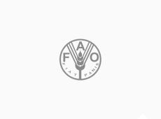 FAO Moçambique