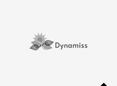 Dynamiss Lda